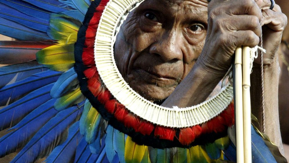 Klimagipfel: Brasiliens Ureinwohner kämpfen um ihren Wald