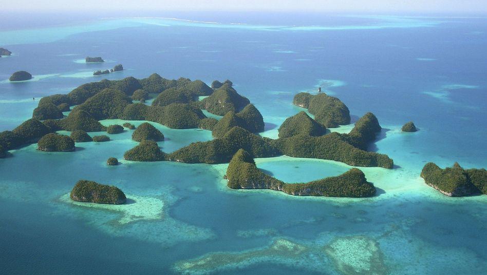 Südsee-Staat Palau: Neue Heimat für Guantanamo-Uiguren