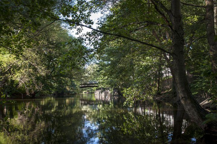 Flussidylle - mitten in der Stadt