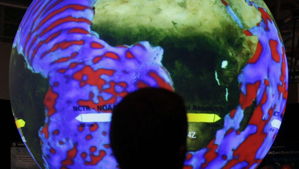 Ozeanversauerung: Stress für polare Meeresbewohner