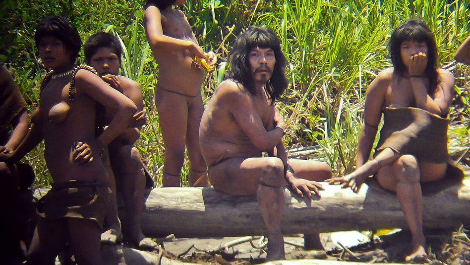 Weitgehend unkontaktierter Stamm: Mashco-Piro-Indianer in Peru