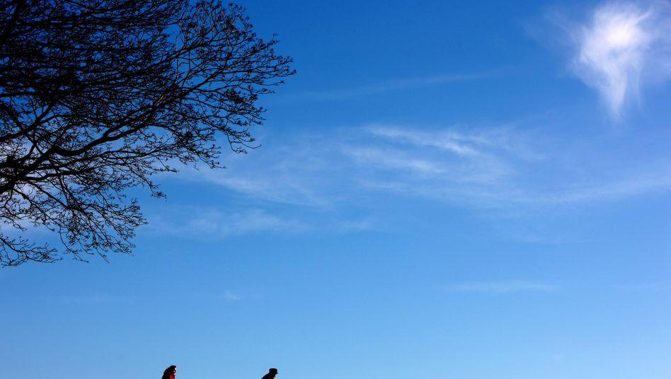 Radeln bei mildem Winterwetter: Schon leichte, aber doch regelmäßige Bewegung genügt für ein gesünderes Leben