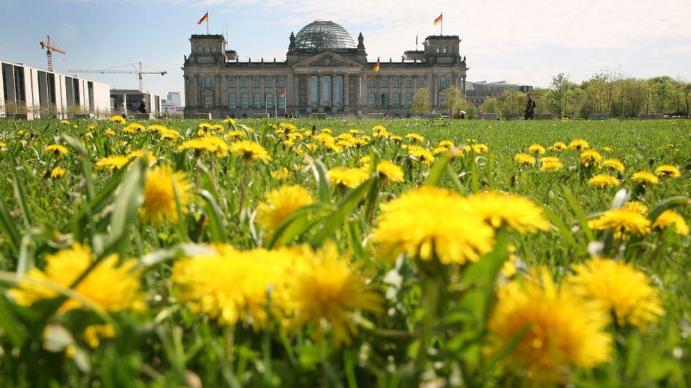 Schwarz-Gelb: Spektakuläre Lobbyaffären