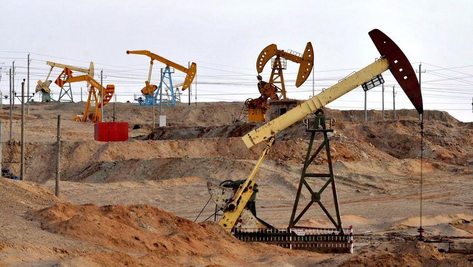 Ölförderung von PetroChina: Fallende Einnahmen