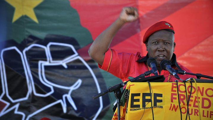 Julius Malema: Oberbefehlshaber der Rothemden