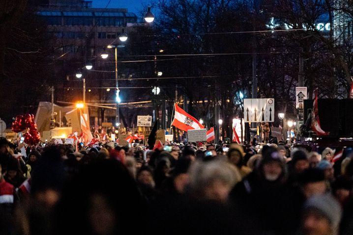 Demonstranten am Samstag in Wien