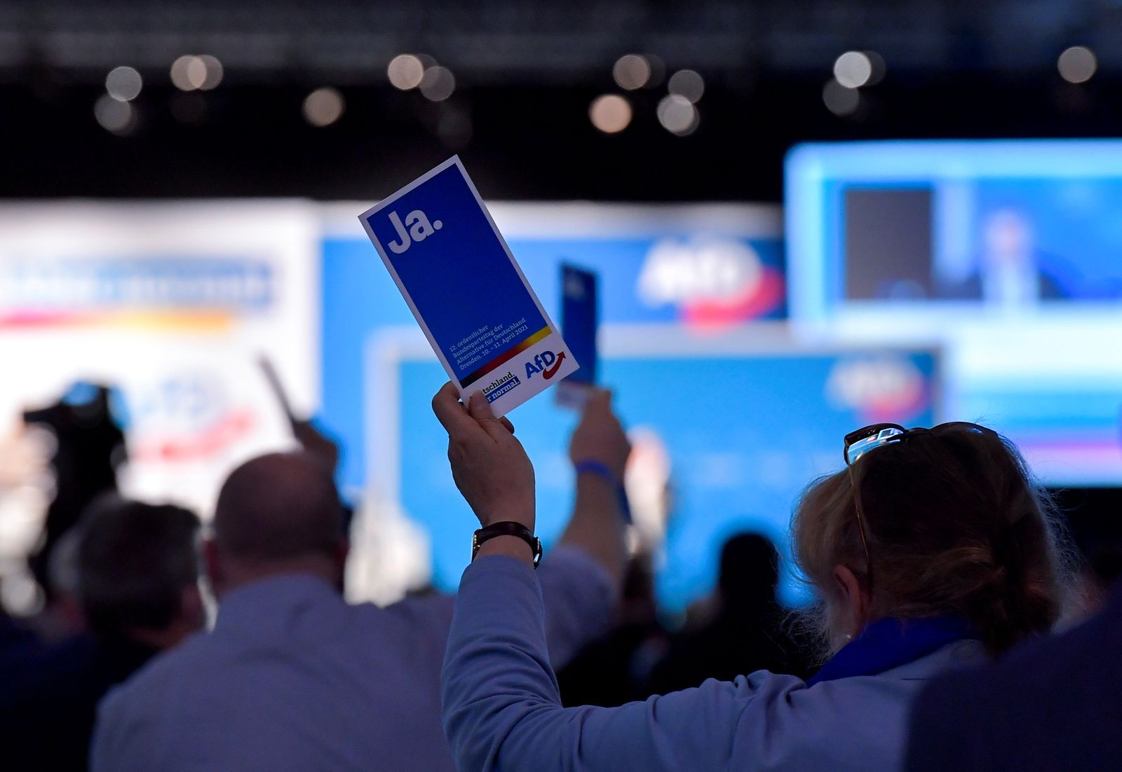 AFD party congress in Dresden