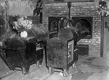 """Krematorium in Auschwitz: """"Ein Meer von Blut"""""""