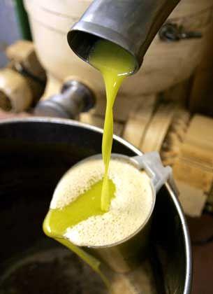 Olivenöl: Das flüssige Gold Andalusiens
