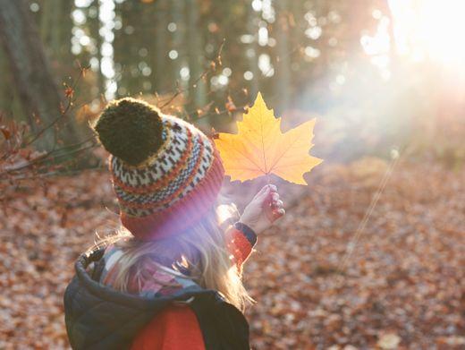 Mit Kindern den Wald entdecken: So geht's