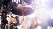 Die bittere Wahrheit über unseren Kaffee