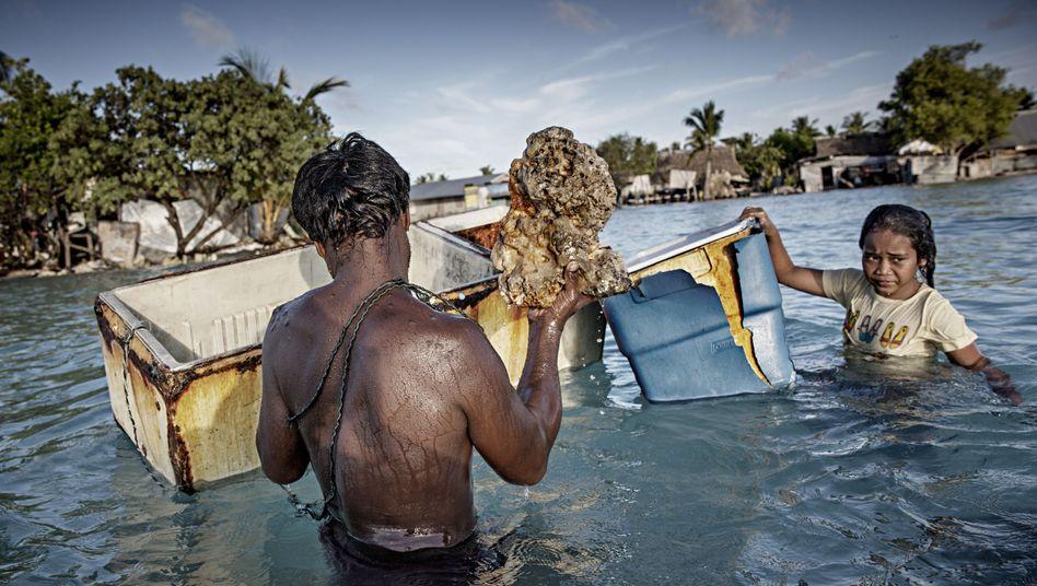 """Schutz vor Klimawandel: """"Undenkbar, dass Deutschland Menschen auf eine sinkende Insel zurückschickt"""""""