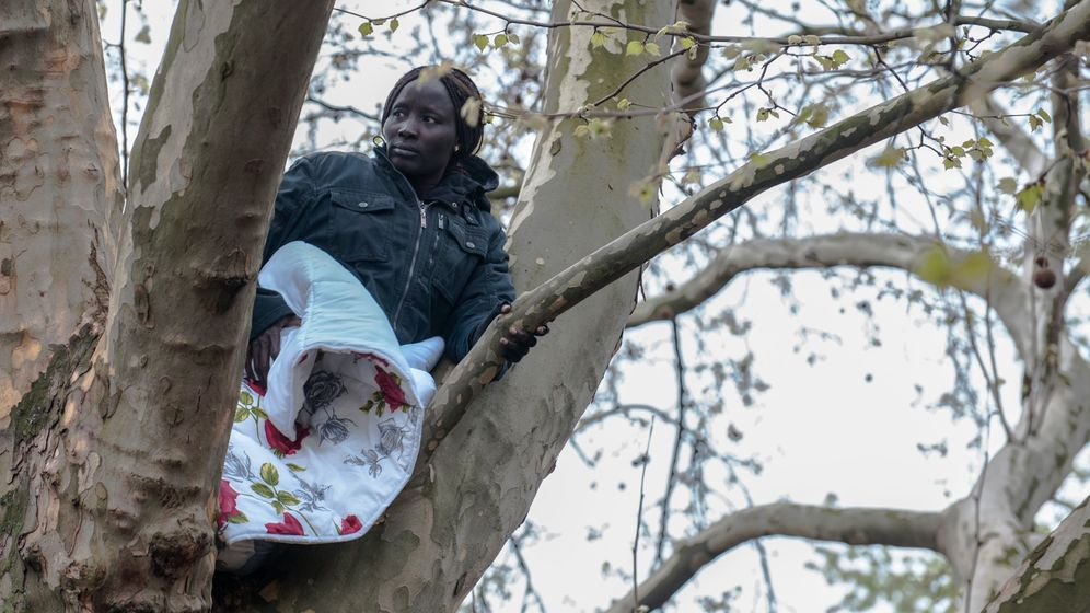 """Protest auf Berliner Baumkrone: """"Irgendwann kommt sie schon runter"""""""