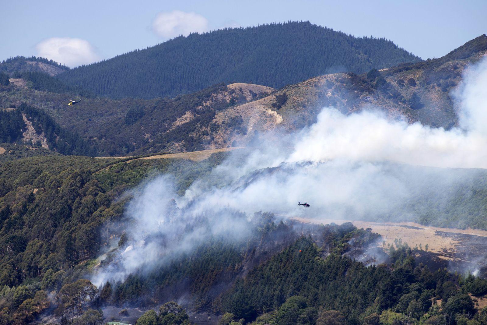 Buschfeuer in Neuseeland