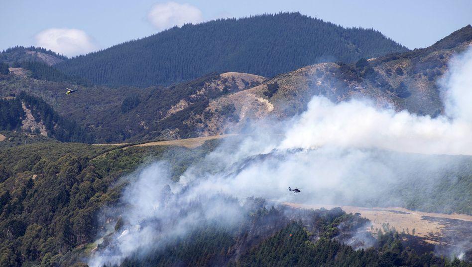 Buschfeuer in der Nähe von Nelson (Neuseeland)