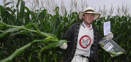 Genmais-Gegner in einem Feld in Brandenburg: Mehrheit für Anbauverbot (Archivaufnahme 2007)