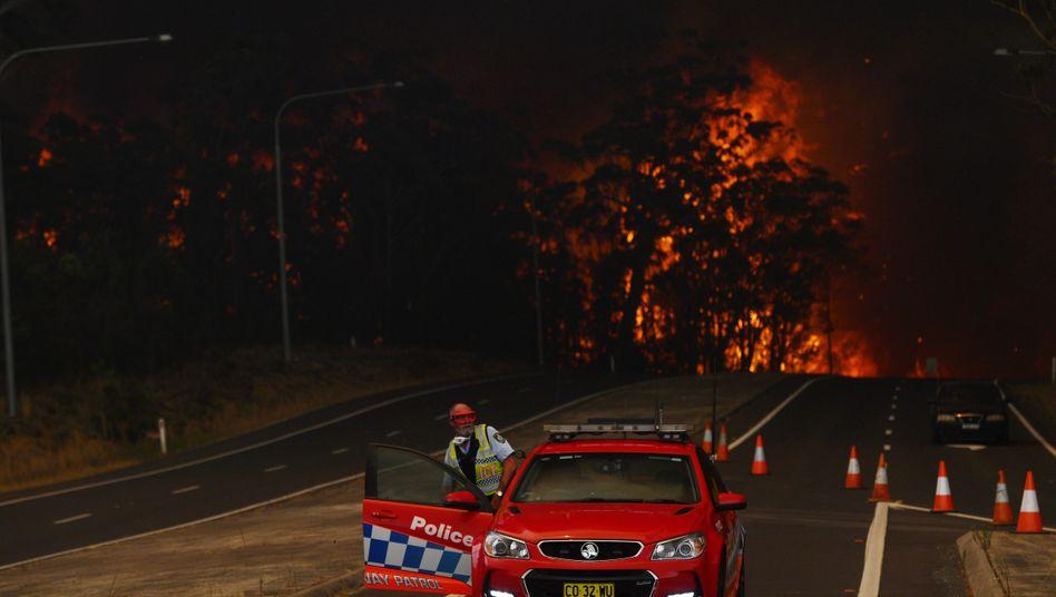 Straßensperre in New South Wales, nur wenige Meter dahinter tobt das Buschfeuer