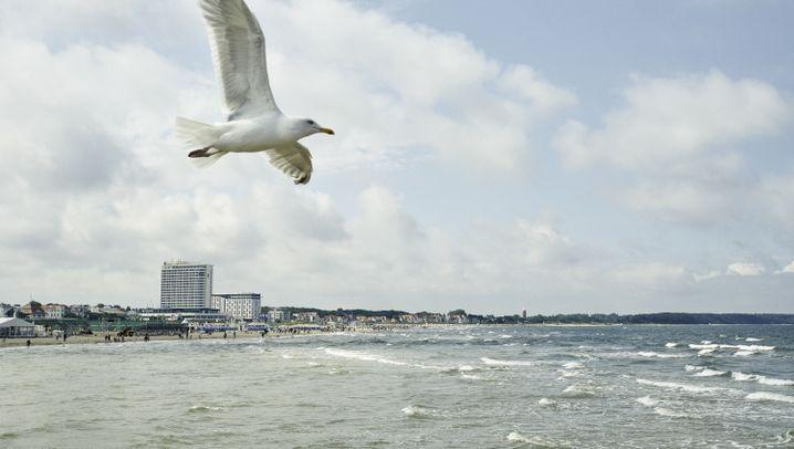 Ostsee: Warne oder Trave?