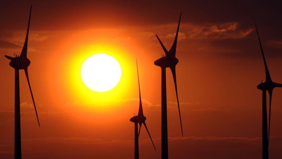 'Instead of building wind turbines, we should build higher dikes,' says Konrad.