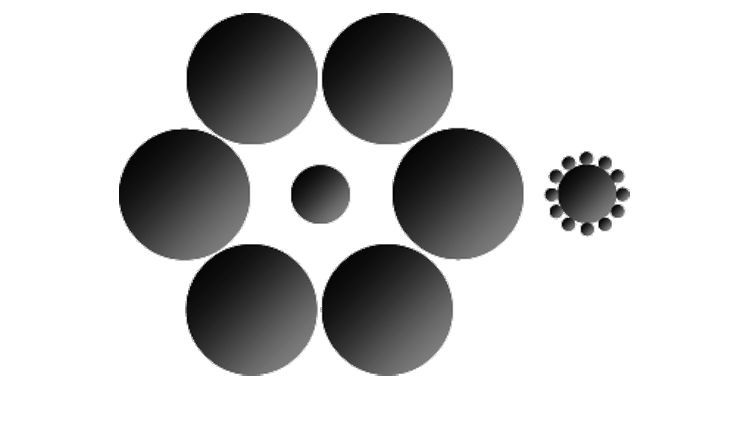 Optische Wahrnehmung: Ich sehe was, was du nicht siehst