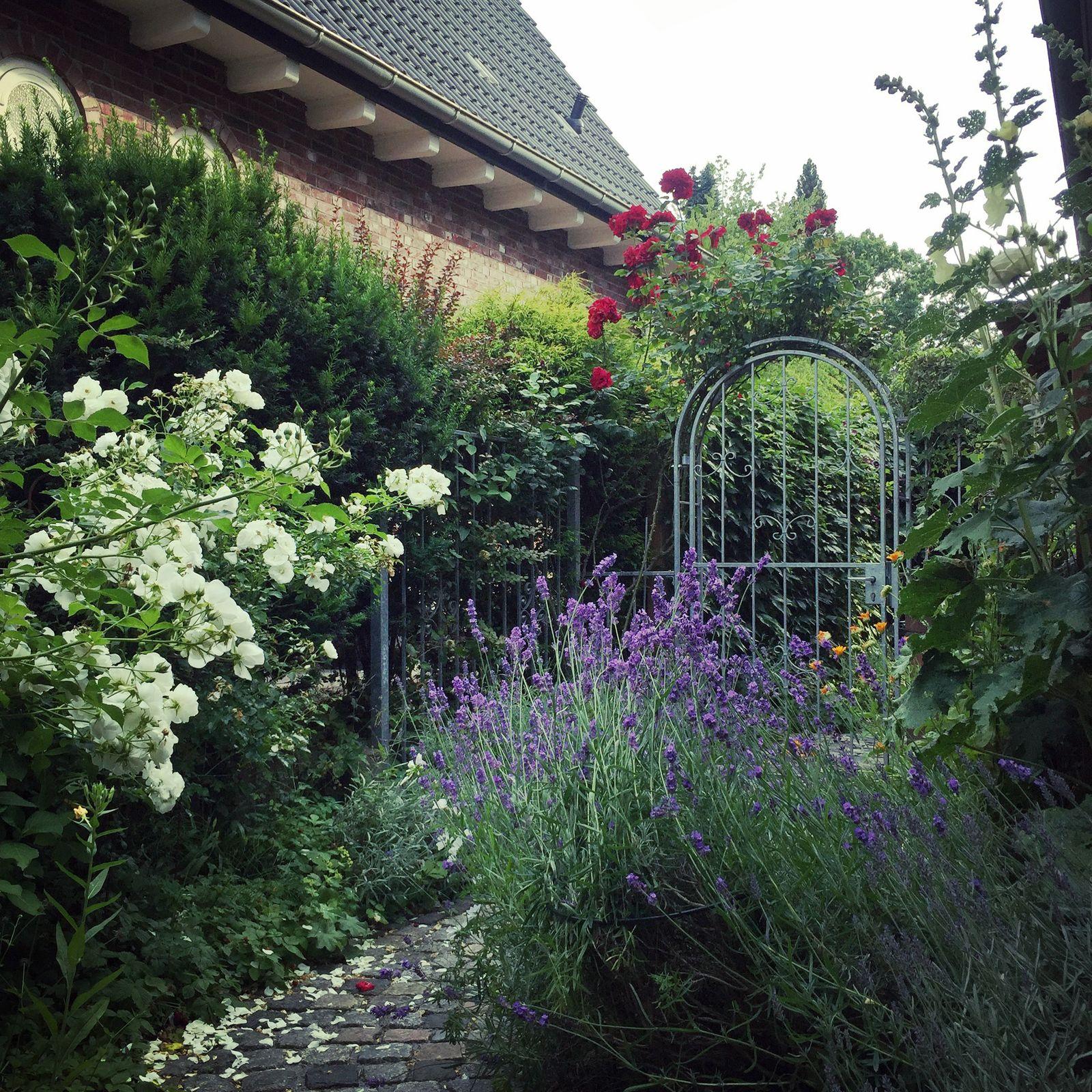 Gartenkolumne