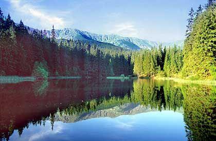 Moränensee in der Niederen Tatra: Der Nationalpark ist Lebensraum für viele inzwischen selten gewordenen Pflanzen- und Tierarten