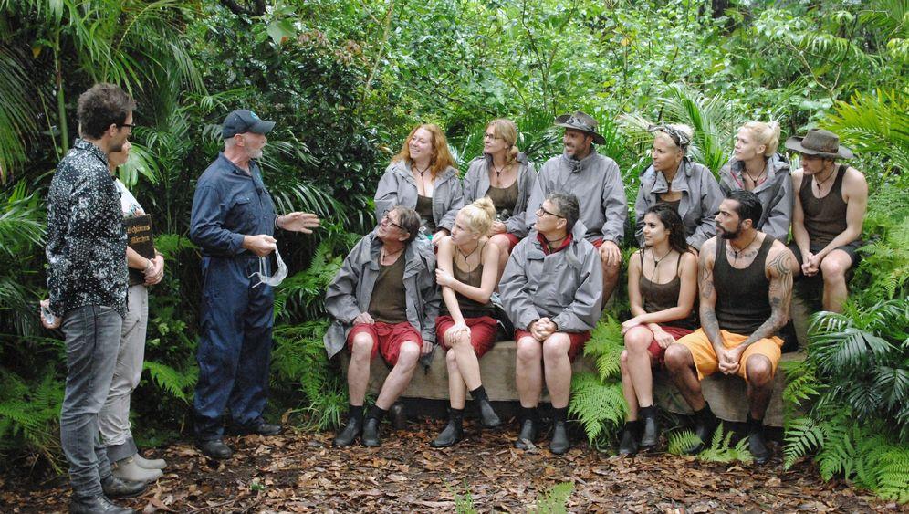 Dschungelcamp, Tag acht: Maulen und meckern im Märchenwald
