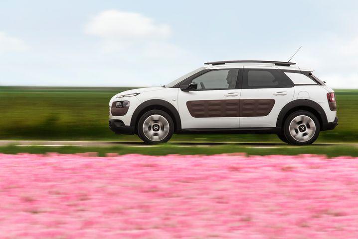 Citroën C4 Cactus: Ziemlich außergewöhnlich