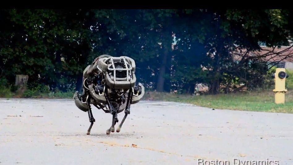 """""""Wildcat"""": Rennroboter aus dem Hause Boston Dynamics"""