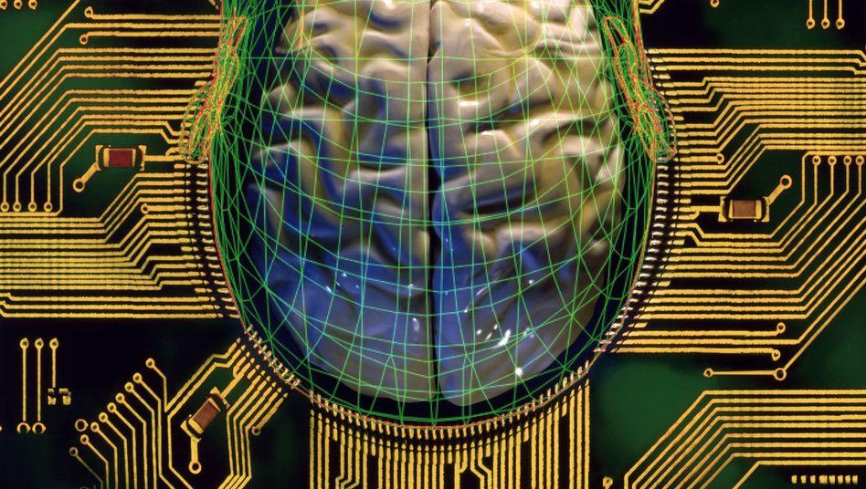 Denkende Computer (Symbolbild): Auch Facebook bekundet Interesse