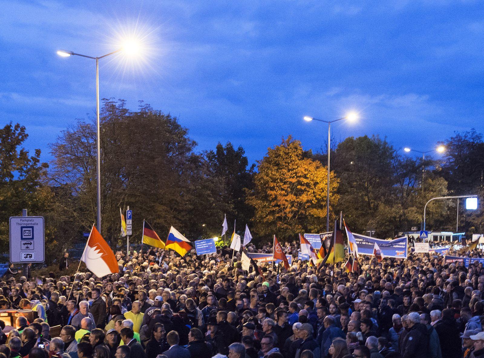 Erfurt Demo AfD
