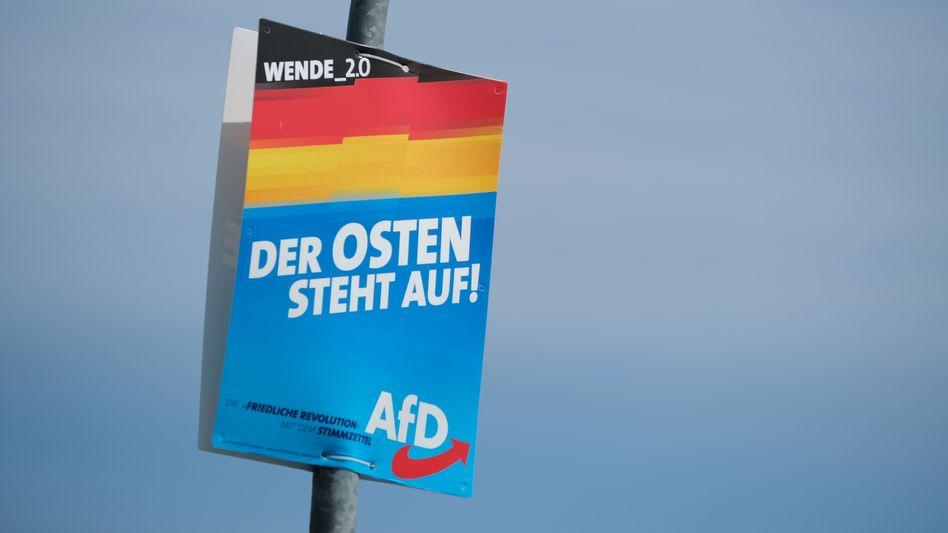 Ein AfD-Wahlplakat in Brandenburg