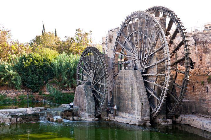 Die Wasserräder von Hama