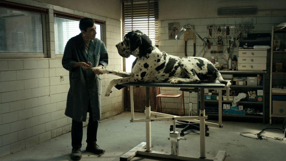 """""""Dogman"""": Ein Hundeleben"""