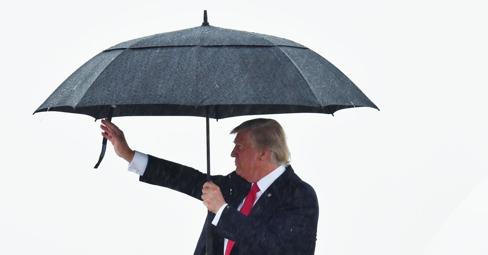Trump Regenschirm
