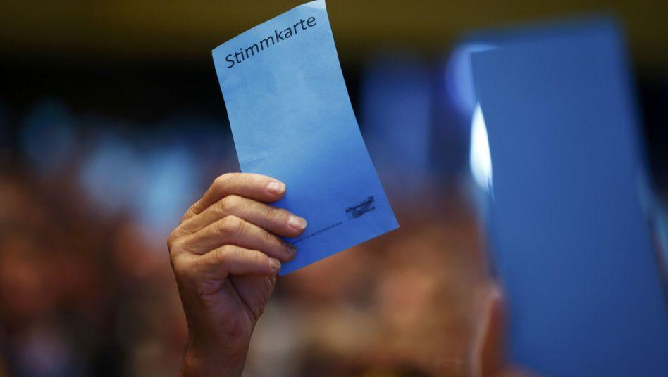 Abstimmung auf AfD-Parteitag