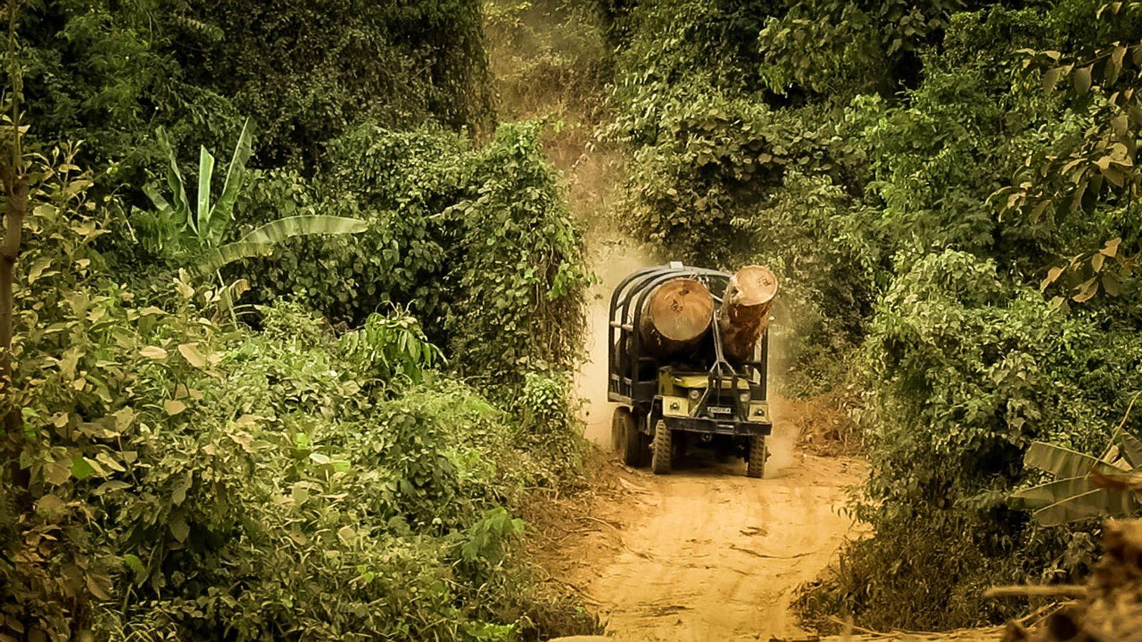 EINMALIGE VERWENDUNG Visual Story Kambodscha - 6