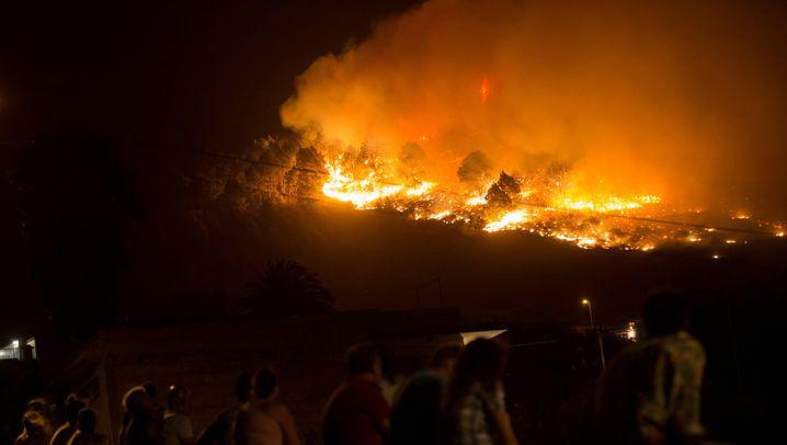 Großbrand auf La Palma: Verheerender Toilettengang