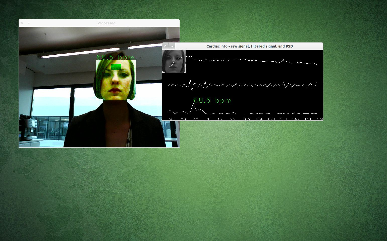 NUR ALS ZITAT Screenshot Videoanalyse / Software misst Pulsschlag ber die Webcam
