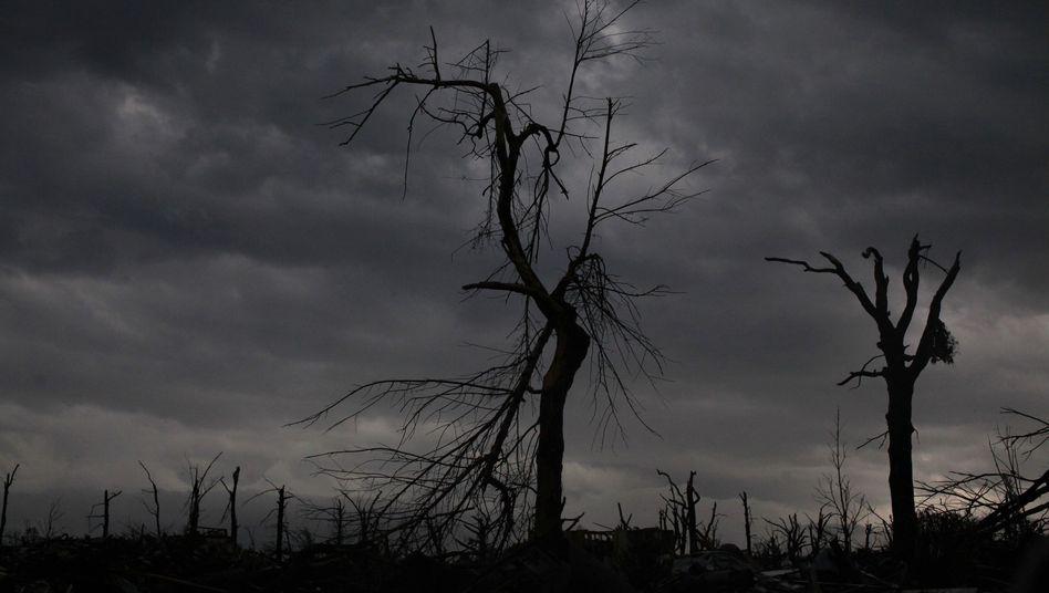 Verwüstete Landschaft nahe Joplin, Missouri (Archiv)