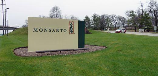 Bayer und BASF sollen wegen Unkrautvernichter Dicamba Millionen an Bauern zahlen