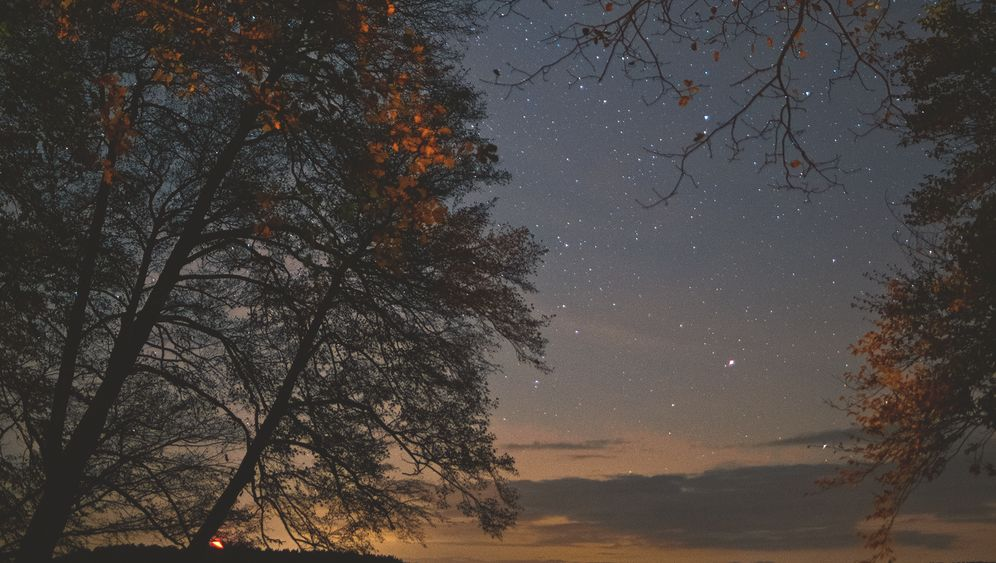 Sternenhimmel über dem Großen Stechlinsee in Brandenburg