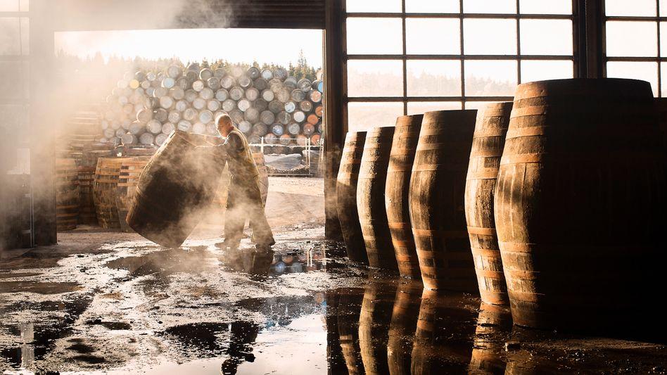 Whiskyfässer (Symbolbild): Bei der Produktion des schottischen Nationalgetränks bleiben Getreidereste übrig, aus denen Biogas gewonnen werden kann