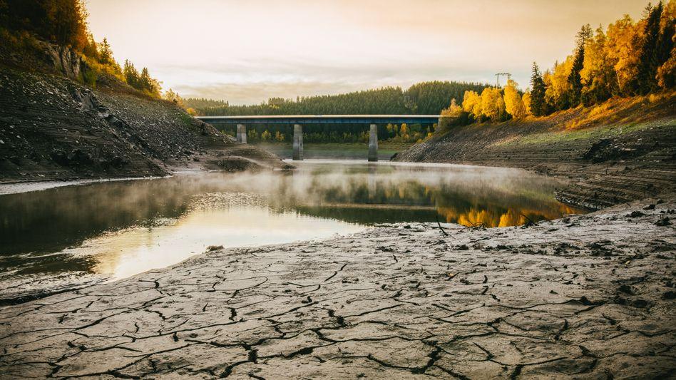 Talsperre im Harz unter Wassermangel