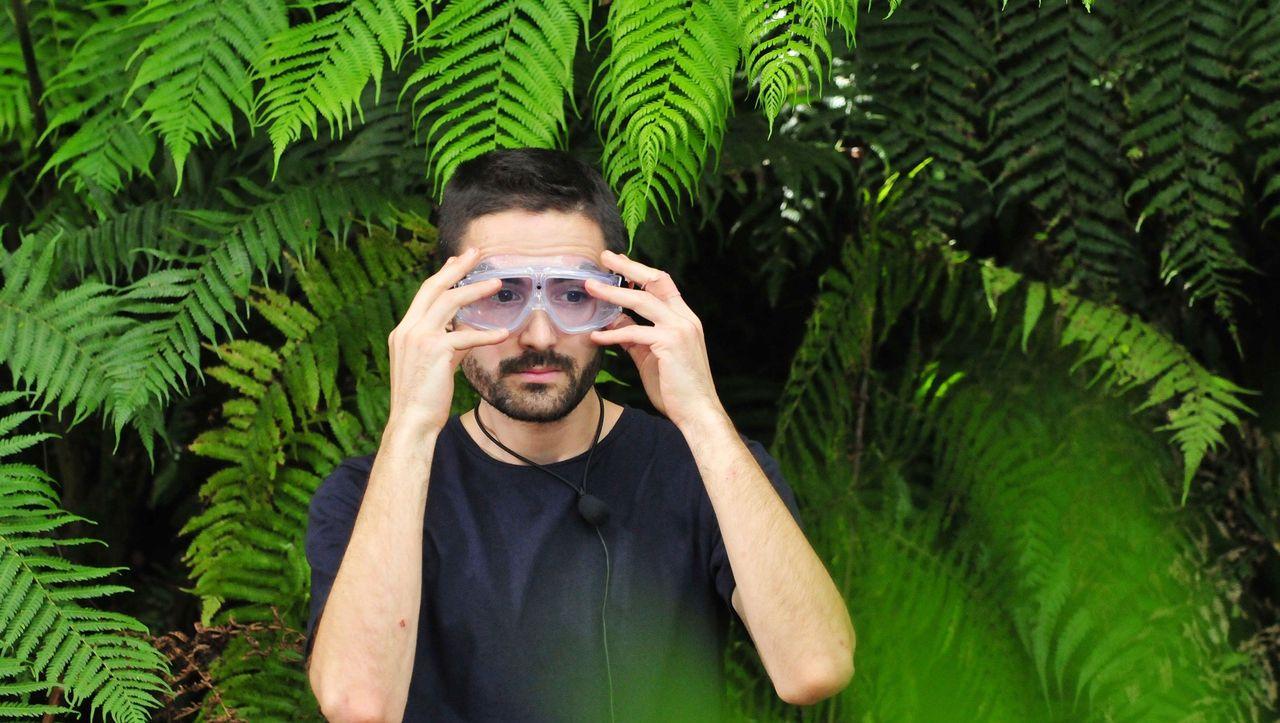 Spiegel Dschungelcamp