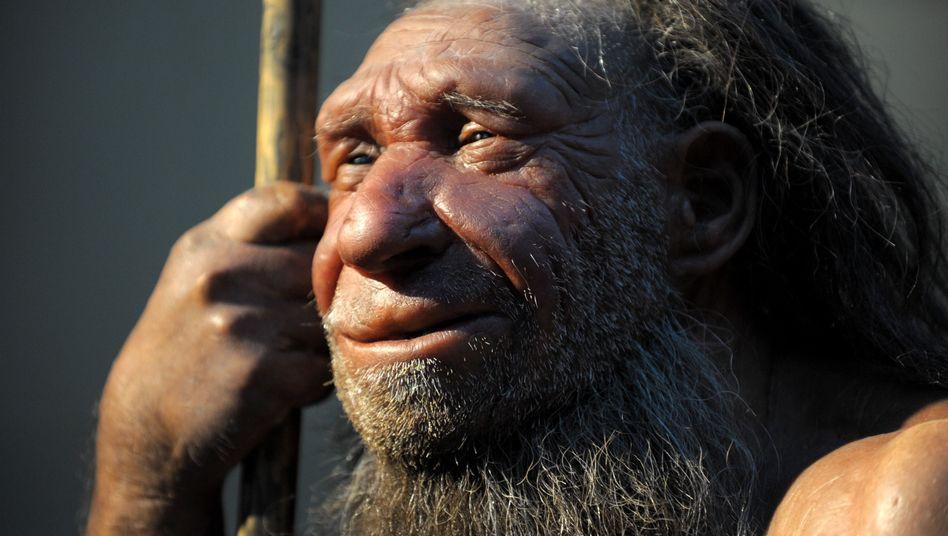 Vor 50.000 Jahren: Neandertaler starben wohl 10.000 Jahre früher aus als angenommen