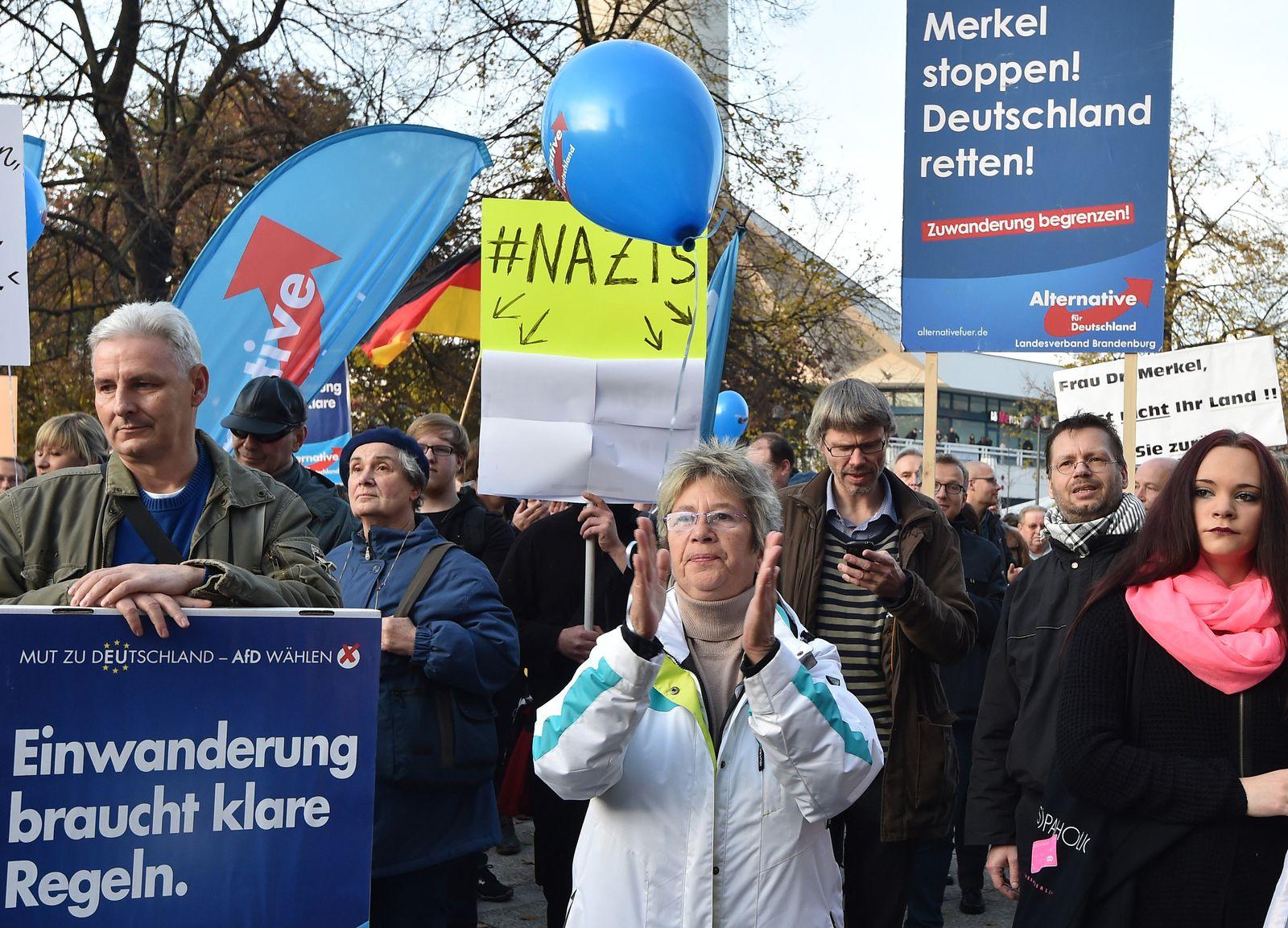 Demonstration der AfD in Berlin