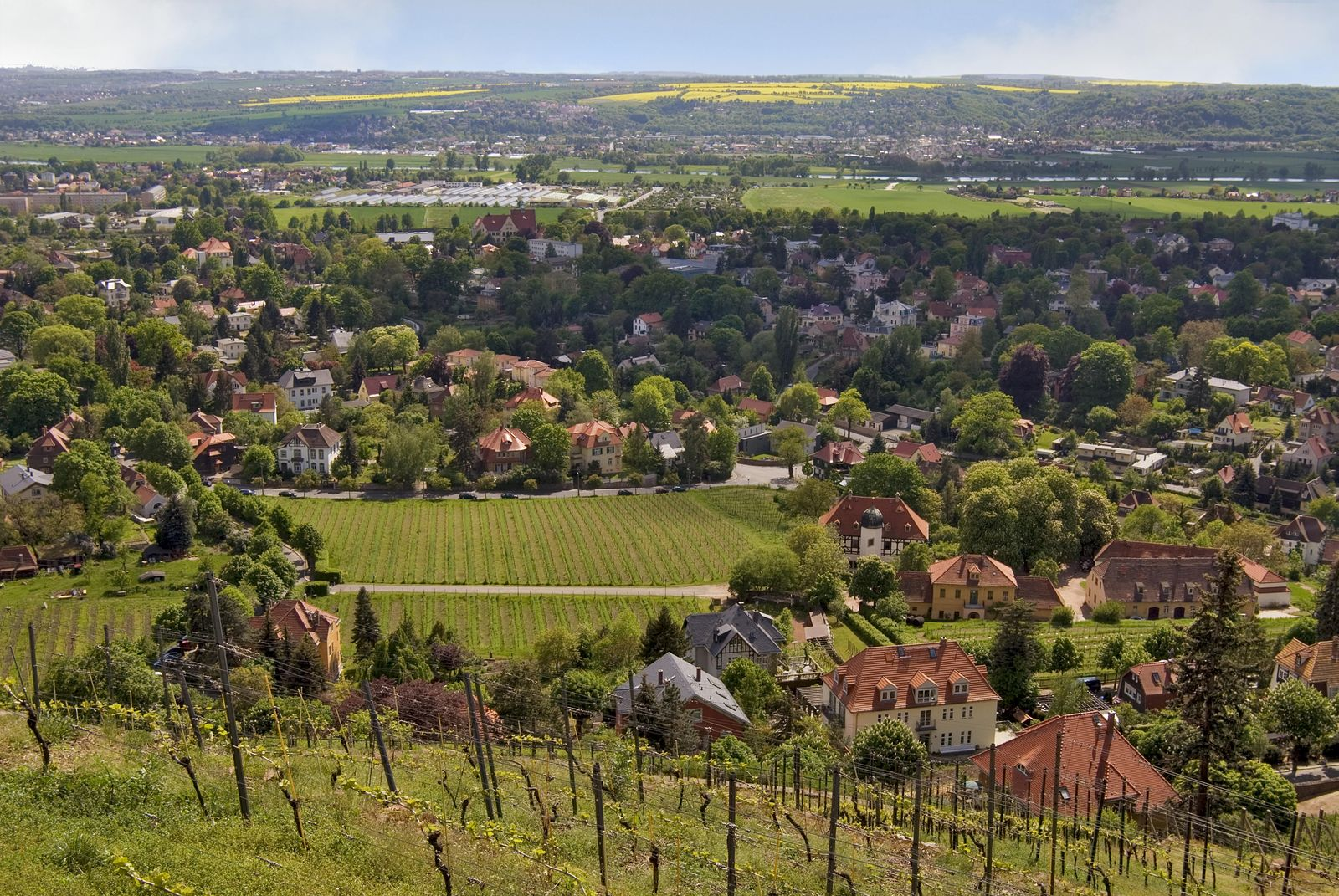 Stock Photo of a view over the Elbe Valleya world heritage area seen from the Vineyards of Radebeul near Dresden. The image was taken on a bright sunny day.