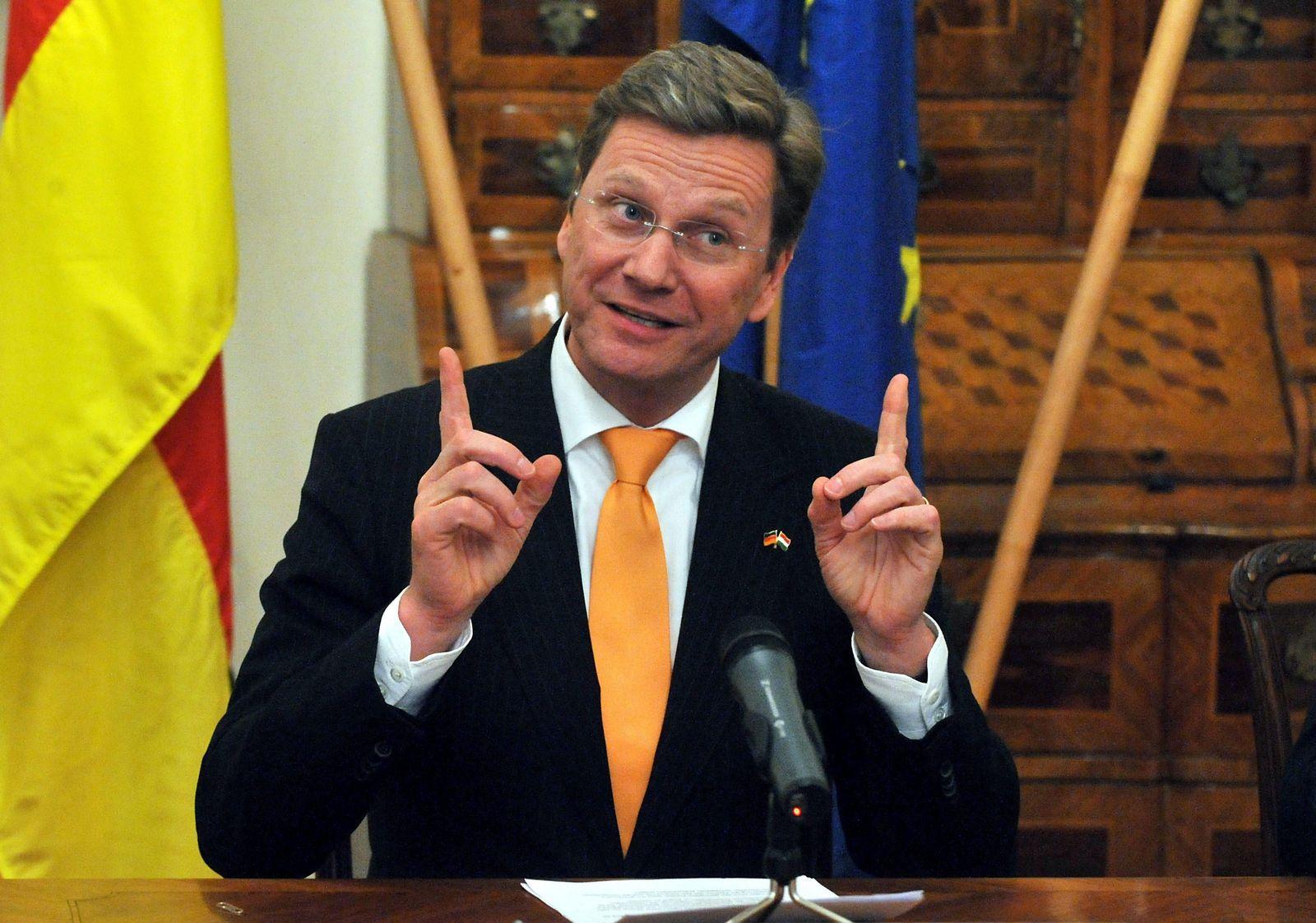 Guido Westerwelle in Ungarn