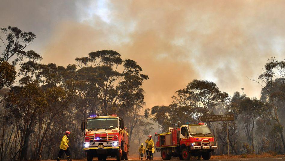 Langanhaltende Trockenheit und heftige Winde fachen die Buschbrände in Australien immer wieder an.